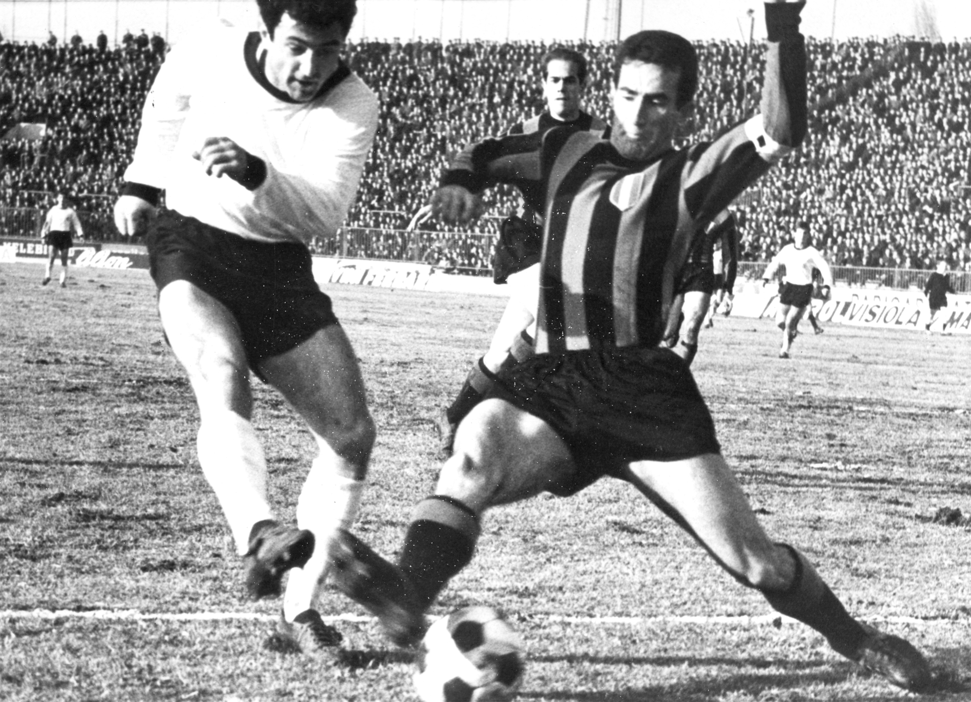 Il destino di Armando Picchi Calcio Romantico